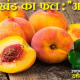 Uttarakhand Fruits