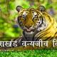 Uttarakhand-Wildlife