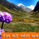 chenap valley