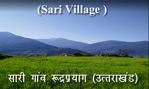 sari-Village